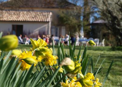Villa-Lafage-ambiance-flowers